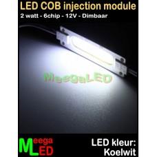 LED-module-COB-6chip-2W-Wit-6500K