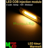 LED-module-COB-6chip-2W-Warmwit-2800K