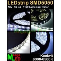 LED-strip-12V-SMD5050-60LED-Wit-6500k